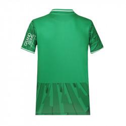 Maillot gardien Authentic vert